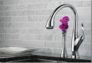 Knoxville Plumbing Sexy Faucet