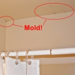 Remodeling Your Bathroom: What to Do If You Find Mold
