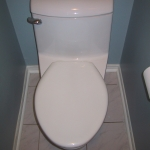 Remodeling Your Bathroom: Choosing Your New Toilet